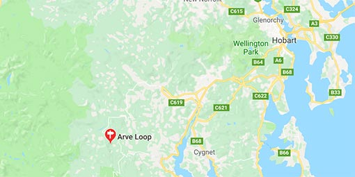 Arve forest loop